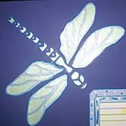 Dragonfly_-_crop.jpg