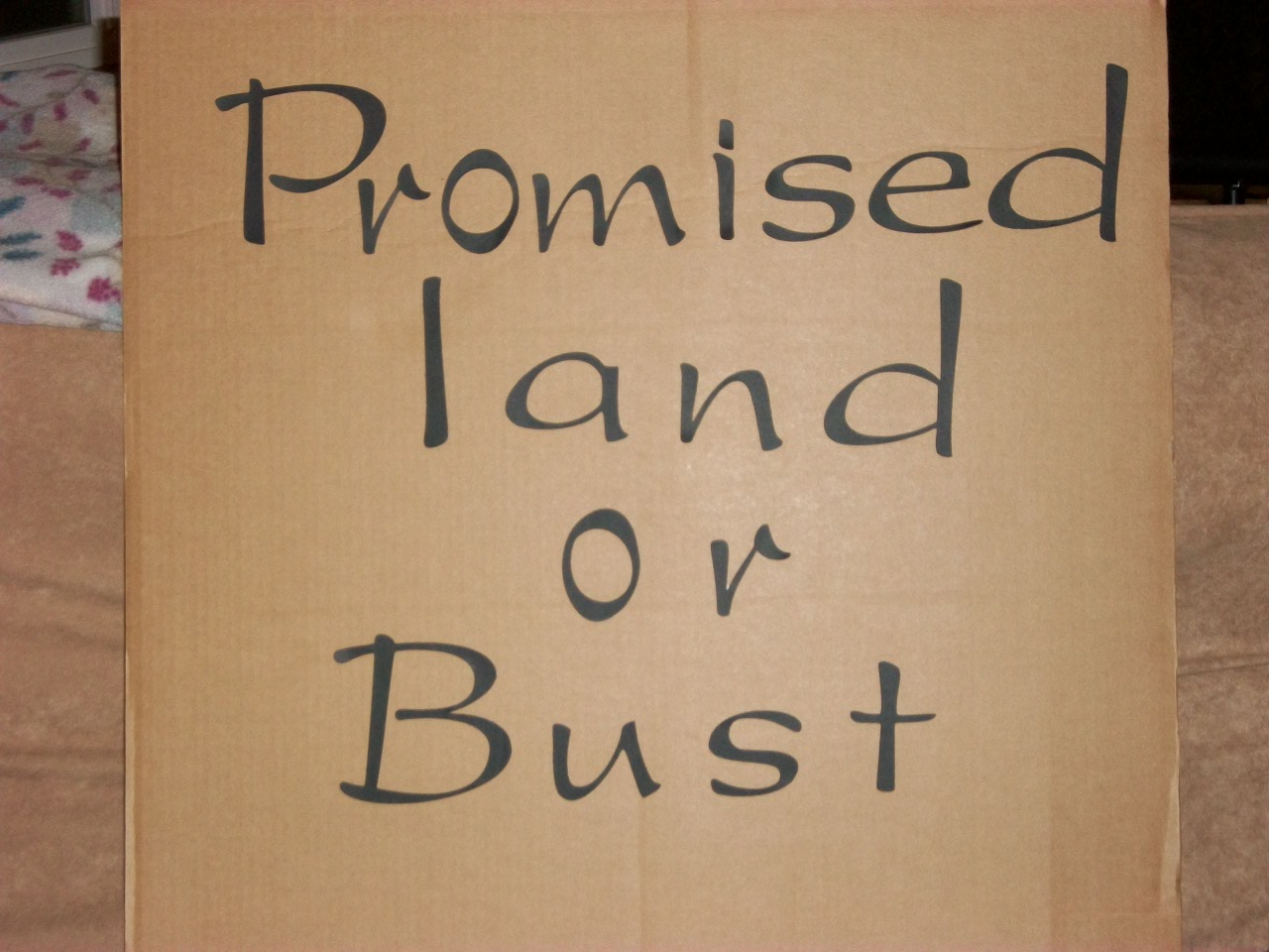 Promised Land           Words  for puppets