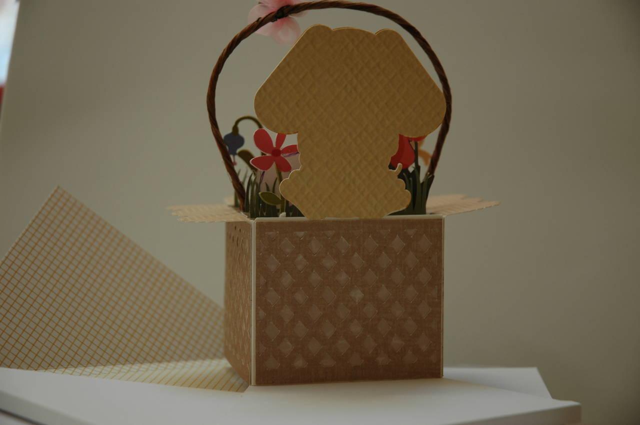 Bunny Box Card