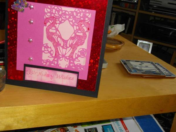 Loving Pink Flamingoes
