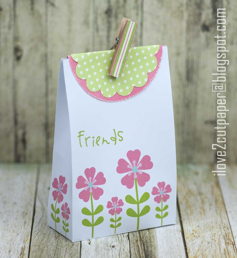 Funky Flowers Gift Bag