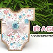 DSC01770_-_onesie_-_pazzles_inspiration_-_ilove2cutpaper_-_it_s_a_girl.jpg