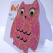 ld_-_owl_-_graduate_-_side.jpg