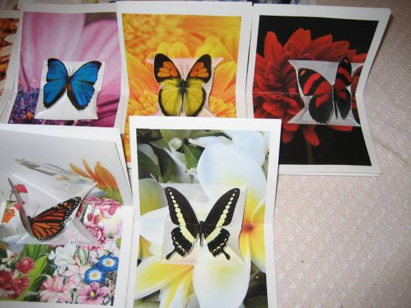 Butterfly Pop Up Cards