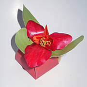 red_orchid_petal_box_2.jpg