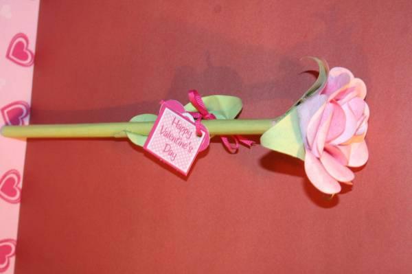 Roses of Love/Friendship