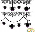 Spider Borders