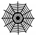 Caught in a Web Collection: Giant Spider Web