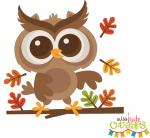 Fall Owl on Branch