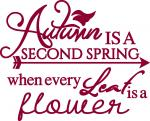 Autumn Harvest Collection: Autumn is Second Spring