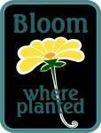 Scrapbook Pocket Cards Collection: Bloom