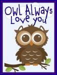 Scrapbook Pocket Cards Collection: Owl Always Love You