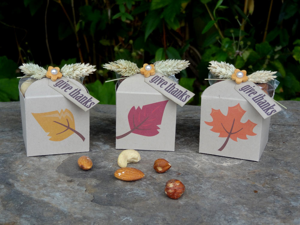 Fall Thanksgiving Favor Boxes