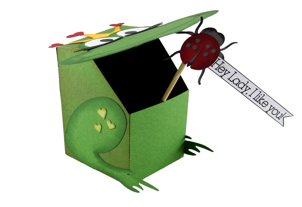 Frog Box Kleding