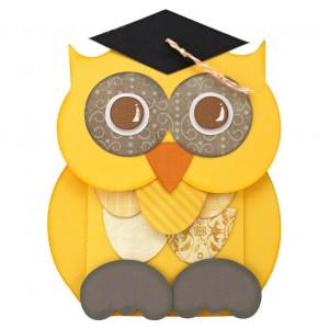 Graduation-Money-Holder-Owl-Outside