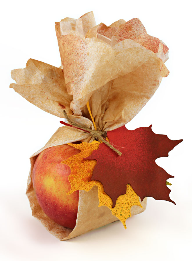 Autumn Harvest Gift Apple and Leaves