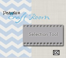 Selection Tool 295x262
