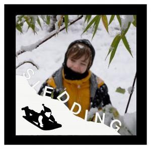 SleddingPic