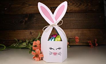 Easy Bunny Box