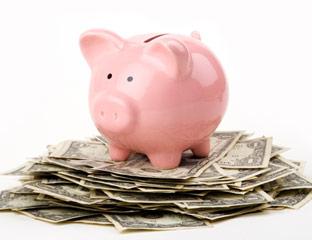 piggy-bank-on-money-md1[1]