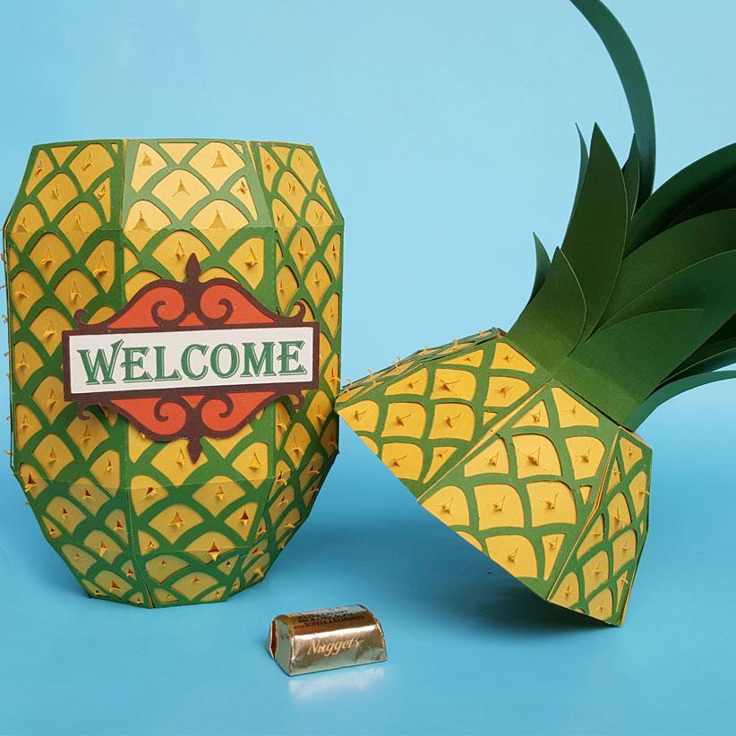 pineapple-box-SQR