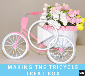 Tricycle Treat Box