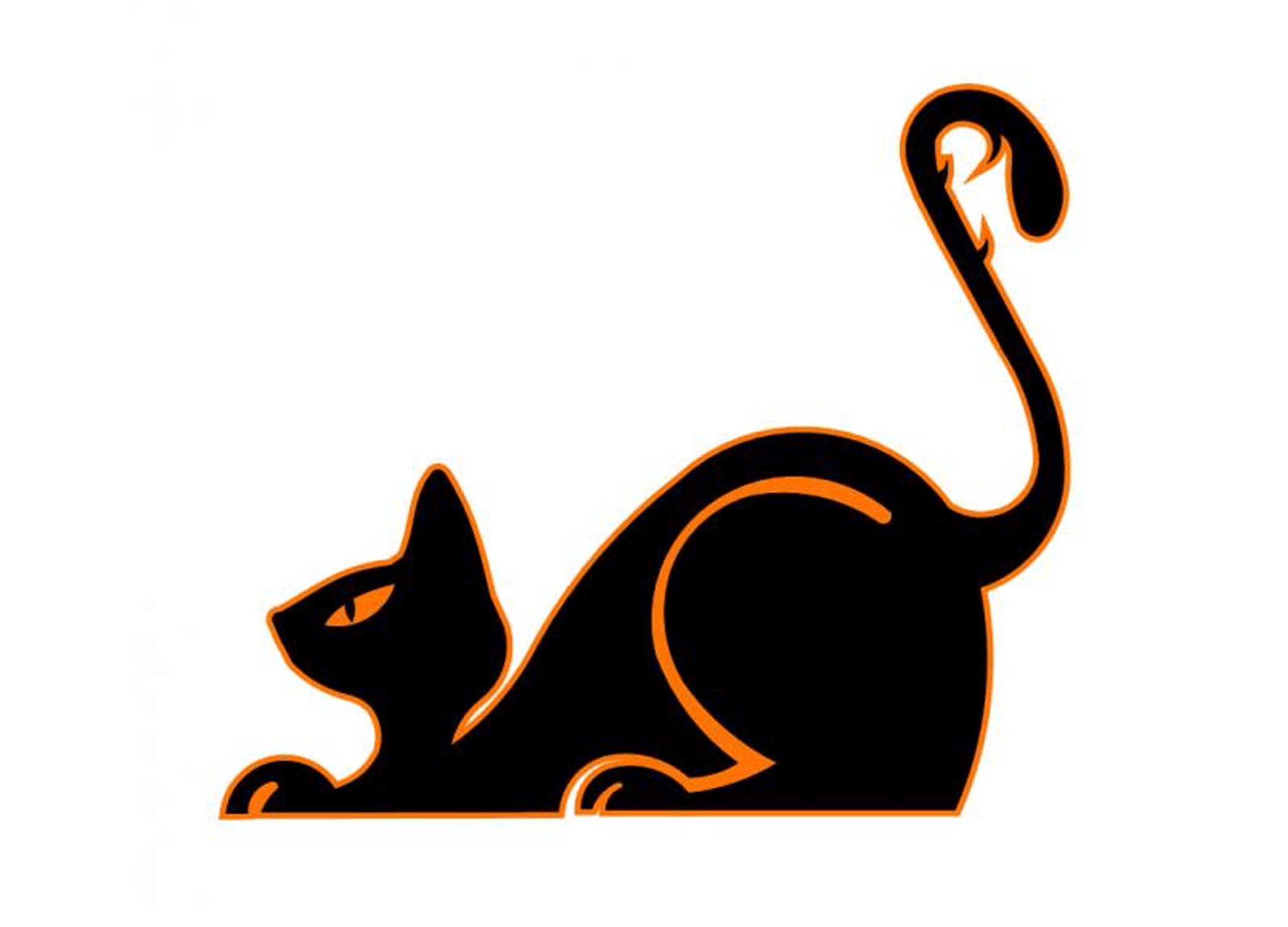 Wicked Cat